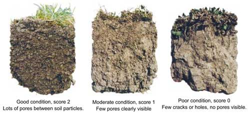Soil porosity, the good the bad and the ugly.