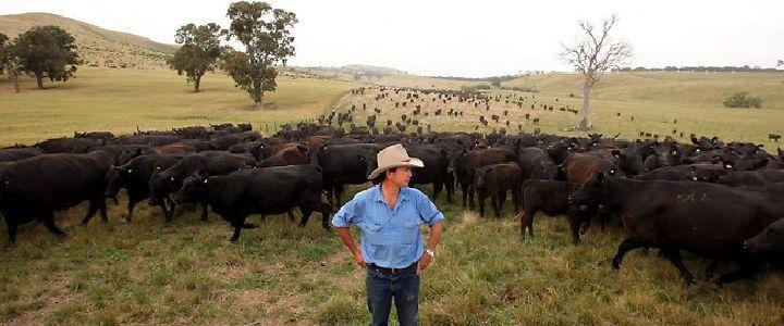 Pasture Quality